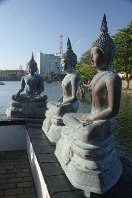 multi Buddha