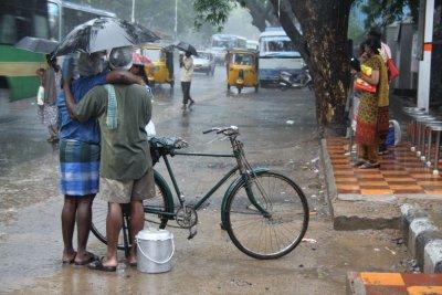 Indian rain love