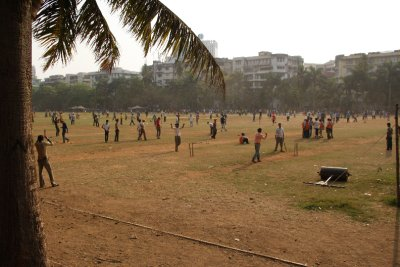 sunday cricket for everyone