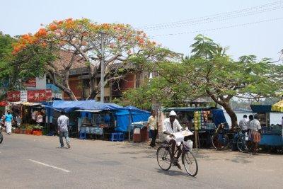 Fort Cochin area