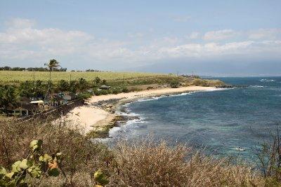 surfer's beach