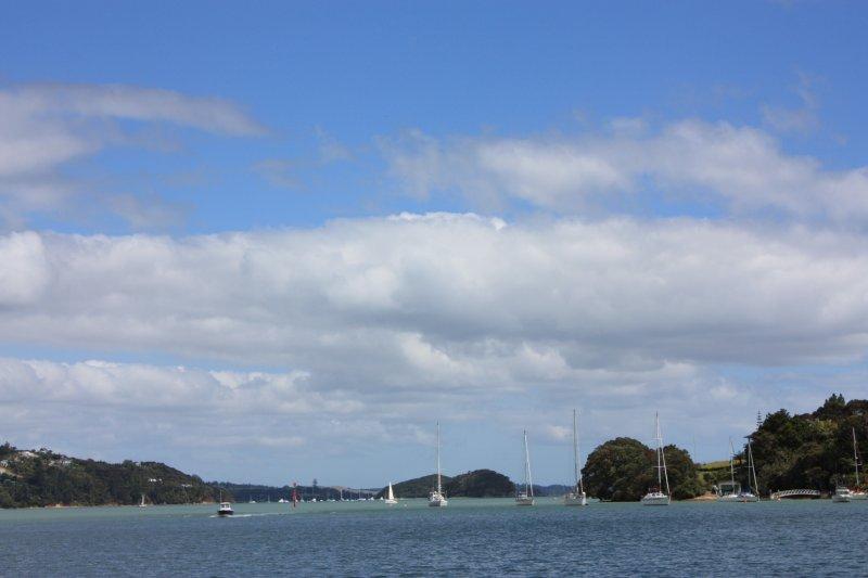 large_NZ_Northla..upo_028.jpg