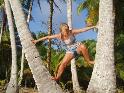 Ine i palmeland