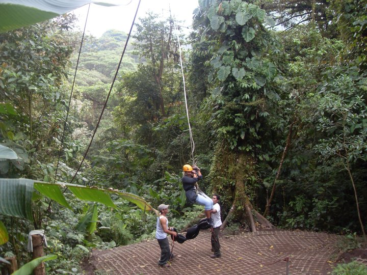 canopy tur