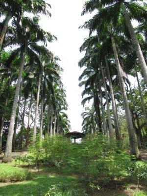 ang mo kio town west garden