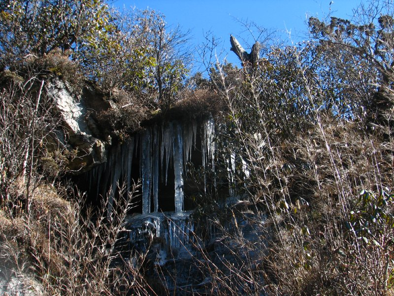 large_110d__Sikkim_icicles.jpg