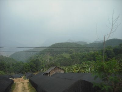 Farming, Hekou region