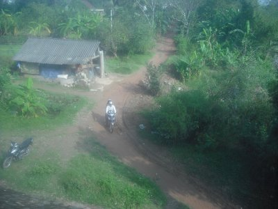 Country lane, taken from moving train, north of Hue