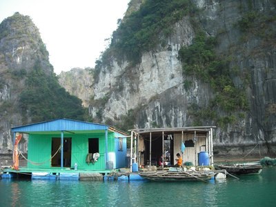 Newly painted house! Floating fishing village, Halong Bay
