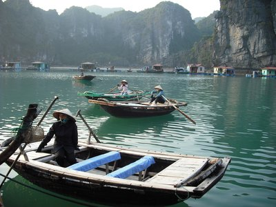 Sampans from a floating fishing village, Halong Bay