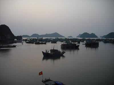 Fishing boats, Cat Ba Island