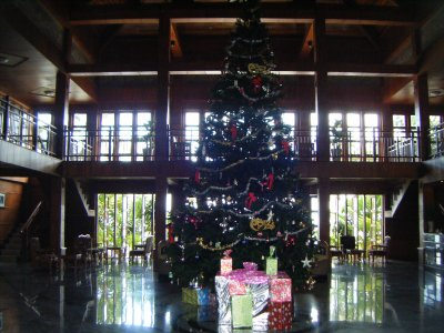 Christmas in Quy Nhon