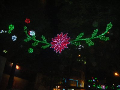 Christmas lights in Saigon!