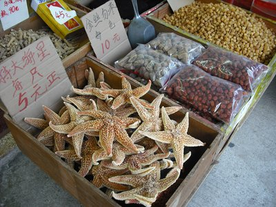 Dried starfish in old HK, loads of this around!