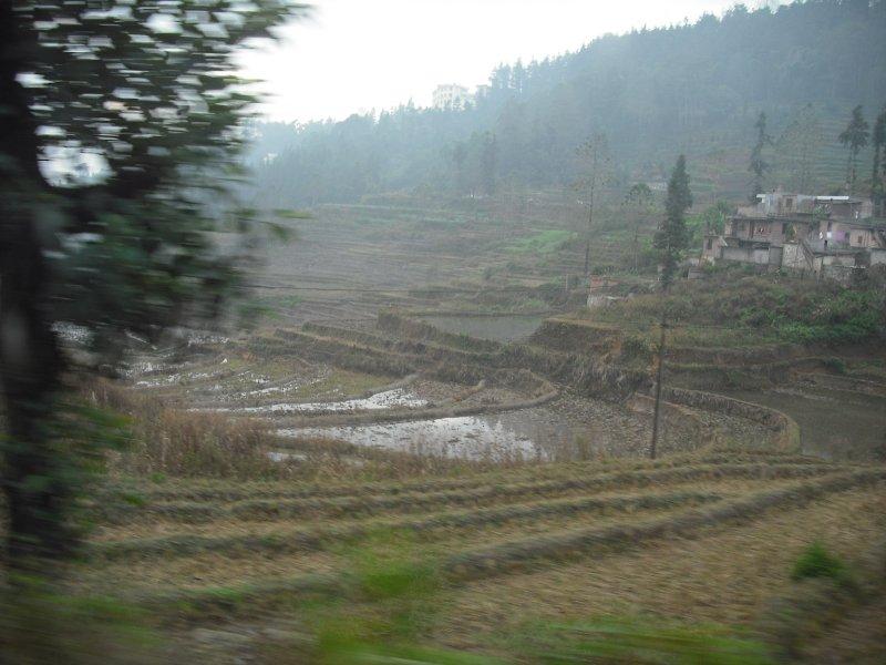 Waterlogged rice terraces, Yuanyang