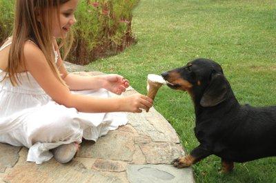 Dog-eating-ice-cream.jpg