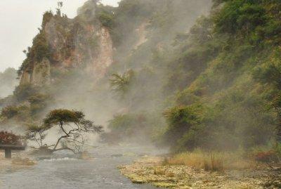 Waimangu (10)