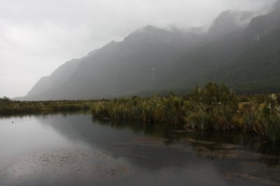 Qtown, Routeburn and Milford Sound (74)