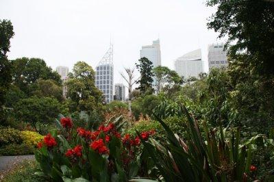 Sydney__15_.jpg