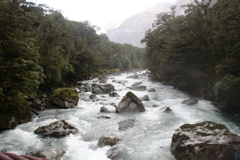 Qtown, Routeburn and Milford Sound (67)