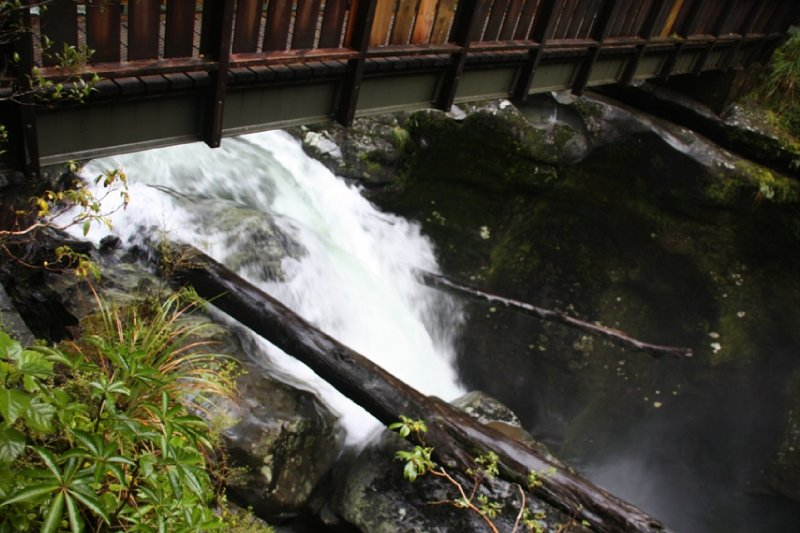 Qtown, Routeburn and Milford Sound (70)