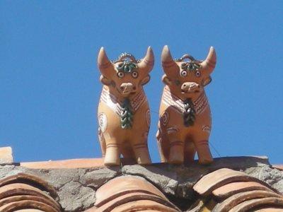 2 bulls on rooftop