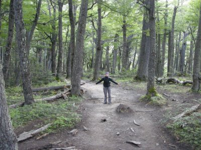 The foresty-bit of the walk - Torres del Paine Nat Park