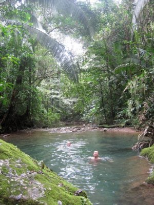 Swimming in the jungle river 4