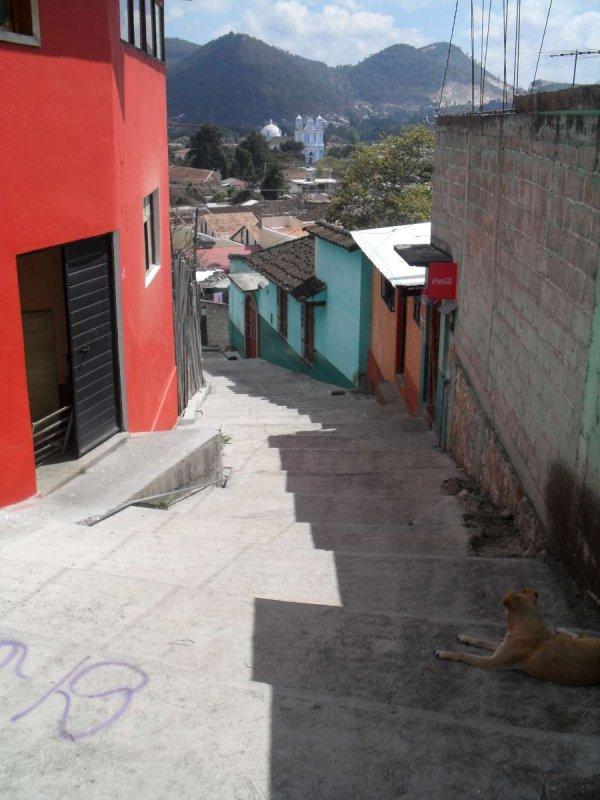 San Cristobal de las Casas 16