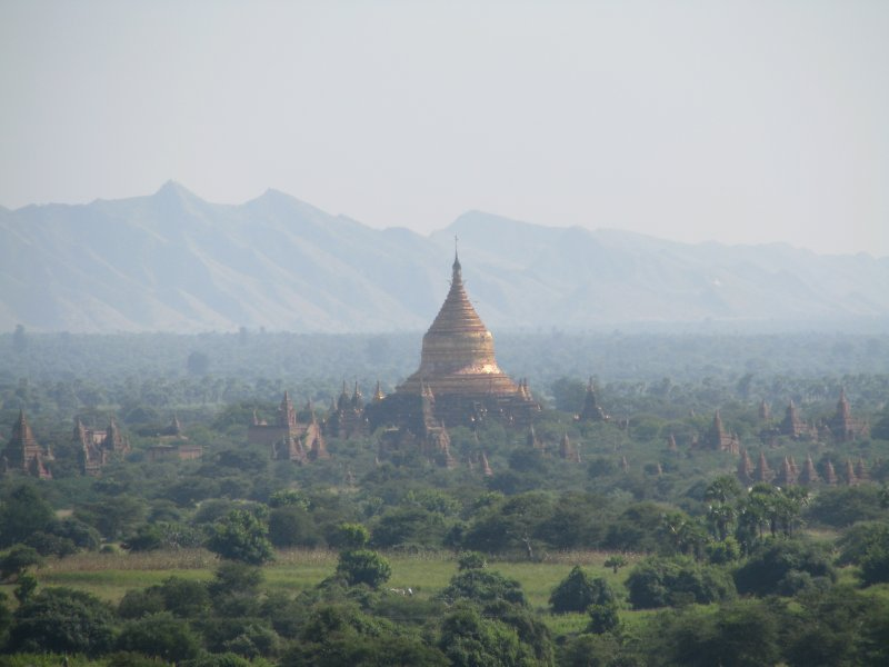 large_ThailandBurma_2213.jpg