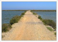the salines / gruissan