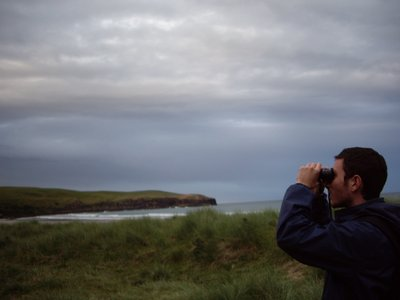 Spotting some birds