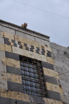 Aleppo__125_.jpg