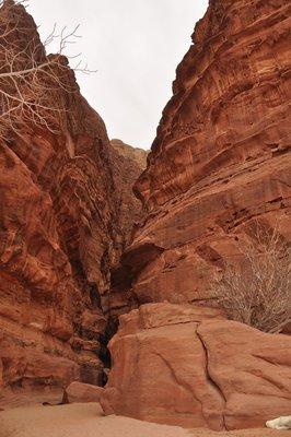 Wadi_Rum__47_.jpg