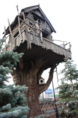 Tree house~