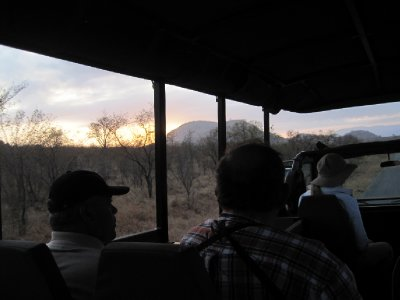 The early morning game drive