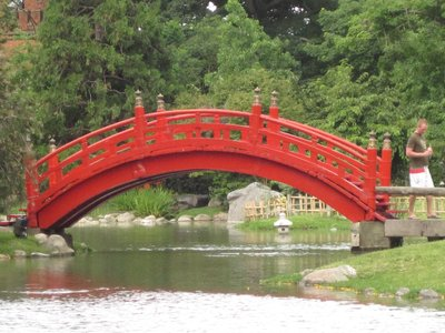 A beautiful bridge in the Japanese Gardens