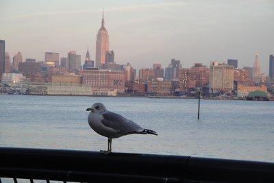 View from Hoboken