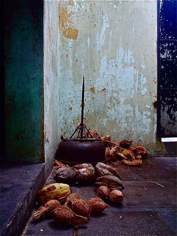 Traditional coconut 'dehusker'