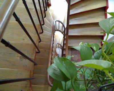 Apartment on Rue Jarente, Paris   March 31, 2011 004