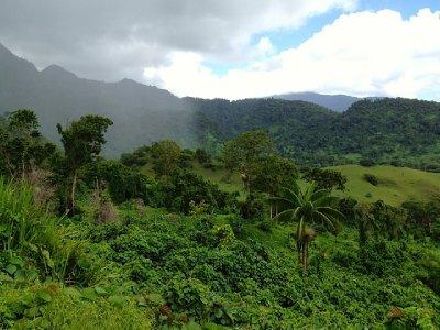 Samoa 2012 #6