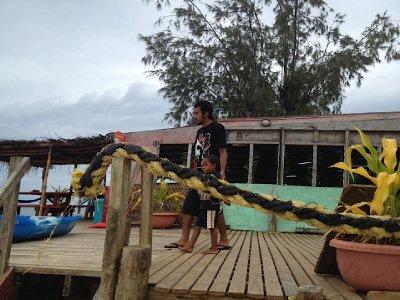 Tonga 2012  #2