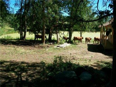 Trueman ranch 3, 2010