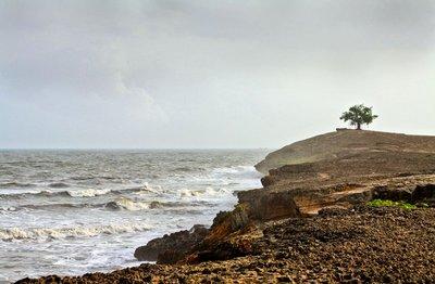 the sea side,..