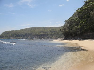 Pebbly Beach NSW Australia