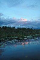 Sunrise in Okavango Delta