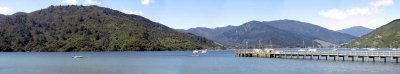 Queen Charlotte Track Panorama