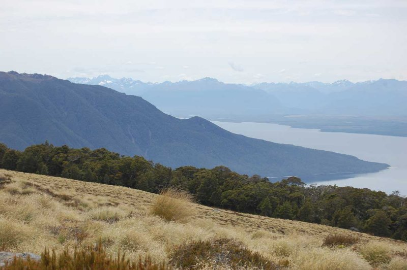 Part of Lake Te Anau