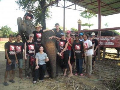 The volunteer gang