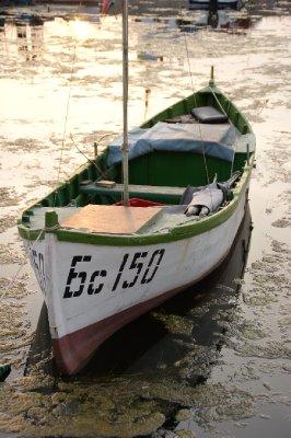 Fıshıng boat